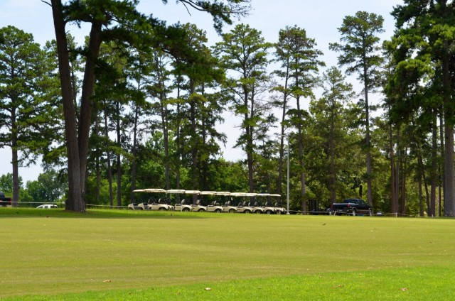 Pine Trees at Meadowbrook Golf Center
